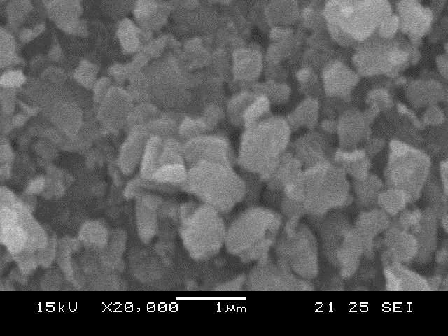 アパタイトナノパウダー顕微鏡写真