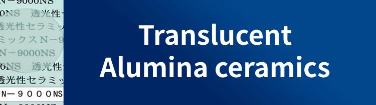 Translucent Alumina ceramics